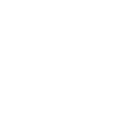 Sho Techology Solutions